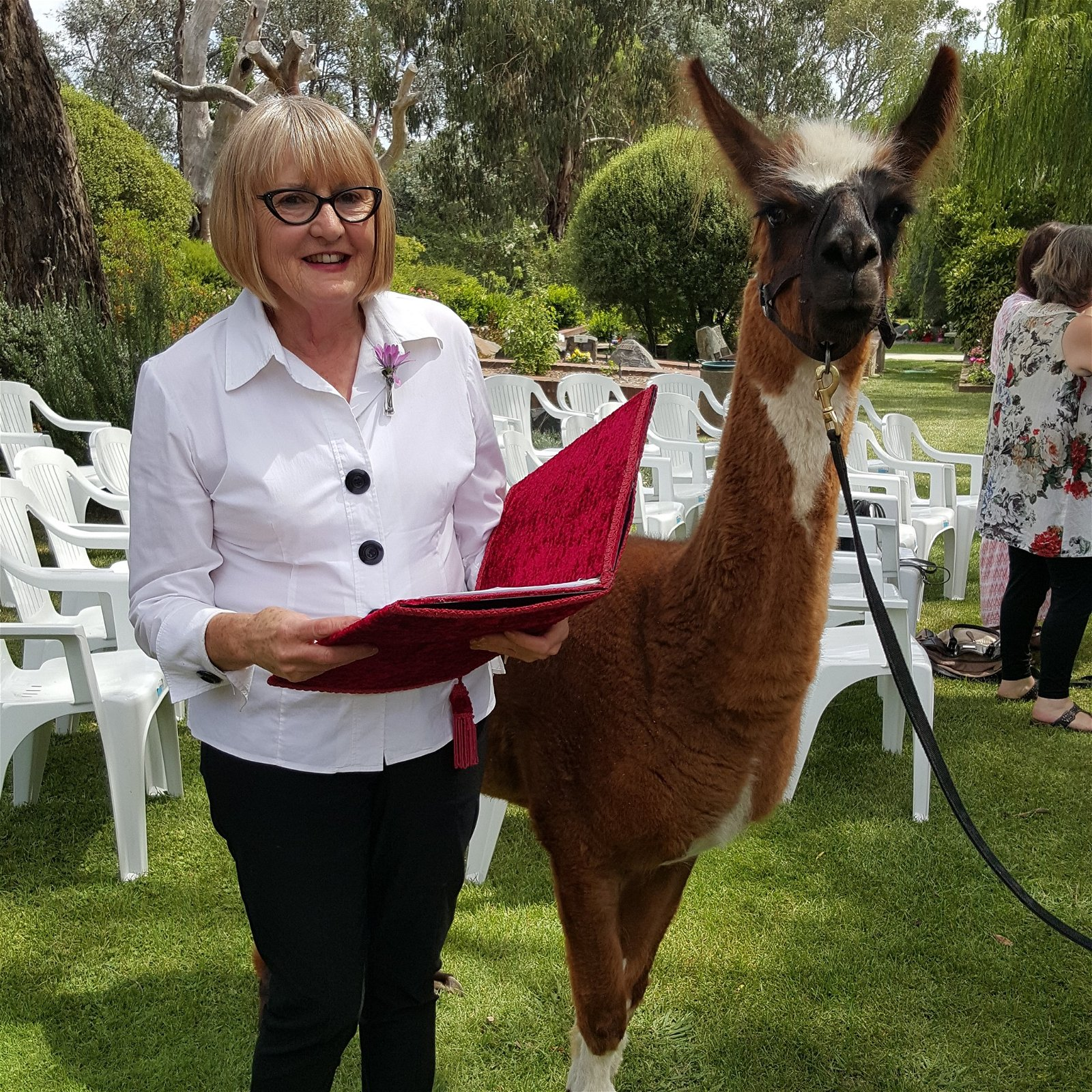 Funeral celebrant Jan Phillips conducts a memorial with a beloved llama present.